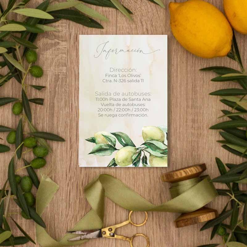 Tarjeta información boda olivos. Bodas rústicas