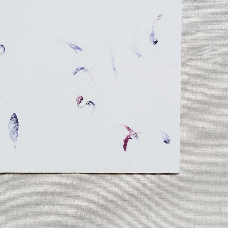 Sobre artesano pétalos azules y rosas detalle
