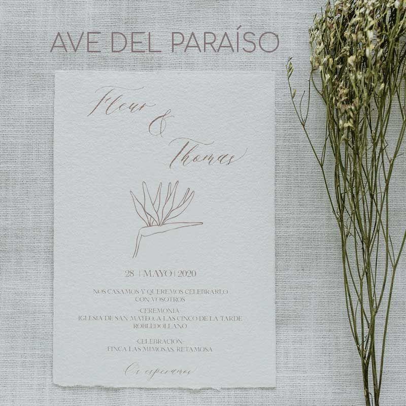 Invitación Ave del paraiso